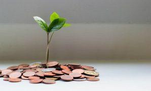 Tips Investasi Untuk Pemula Tanpa Ribet Modal Sedikit dan Dijamin OJK